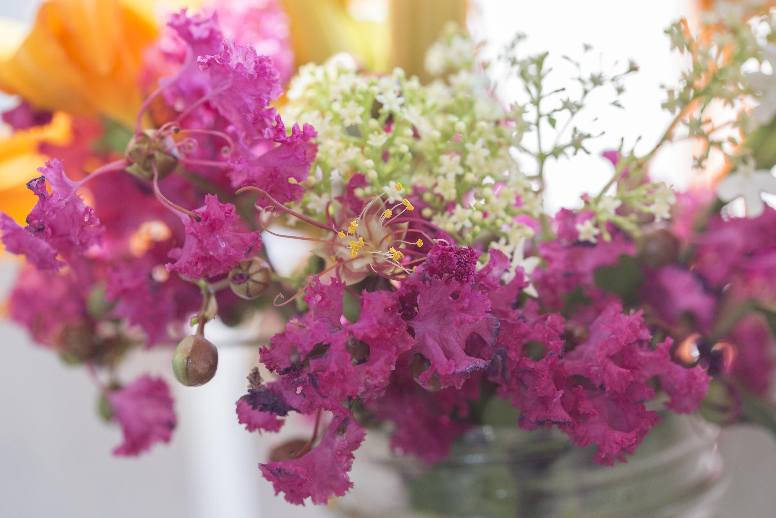 july flowers.jpg