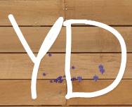YD-logo.jpeg