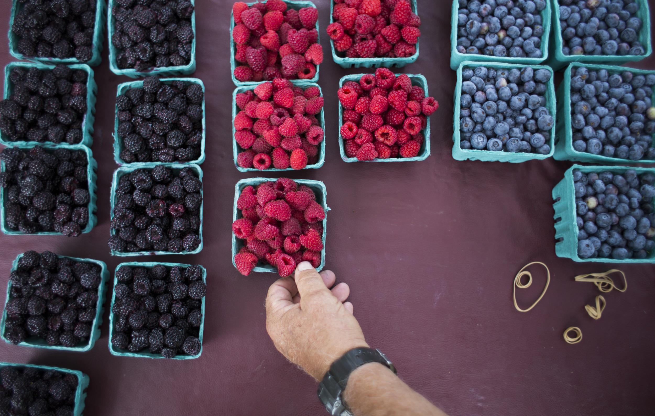 Merle Stutzman, an employee of Sand Hill Berries, sells berries at the Latrobe Farmer's Market held in Legion Keener park.