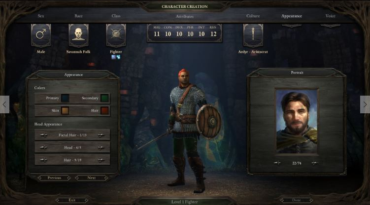Pillars of Eternity allows a lot of modification to your character model, but then you get one of 74 choices for yer head.