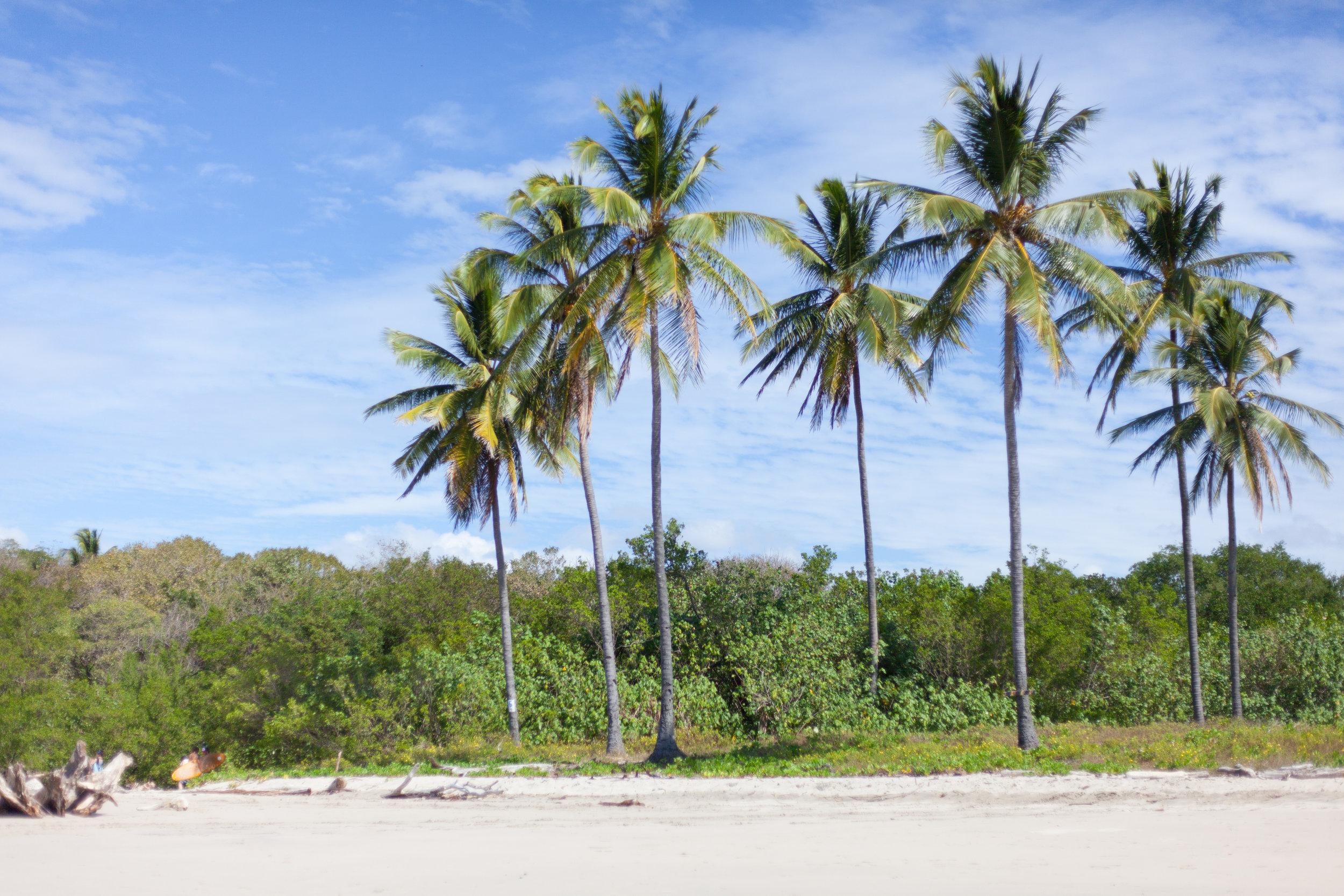 costarica-8.jpg