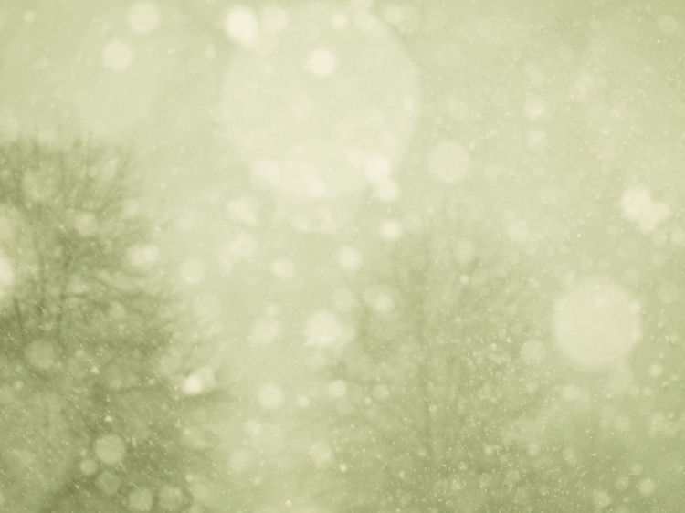 chrysti-hydeck-photography-magical-snow