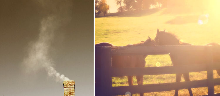 Photo Credits: © Susan Tuttle (left) © Christy Hydeck (right)