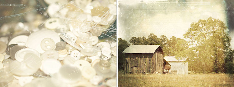 1. Antique Button Collection | 2. Farm in Creedmoor, North Carolina |© Christy Hydeck