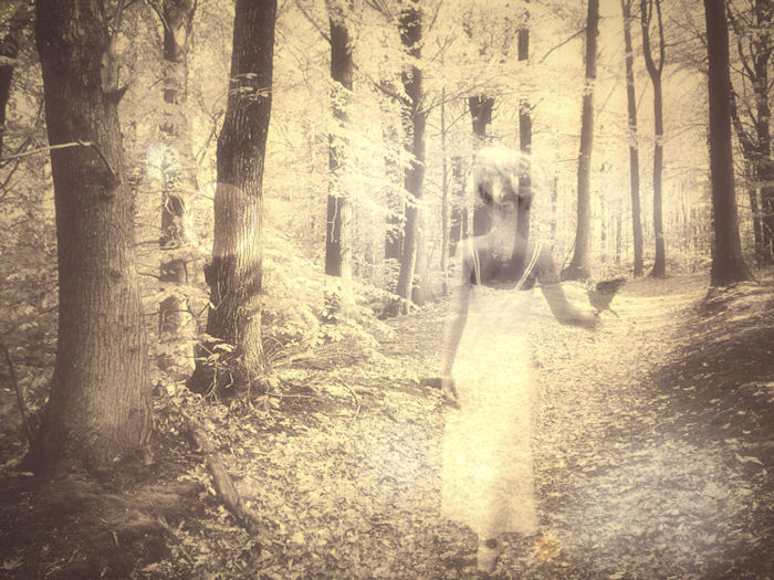 'Move Among Mysteries' -©Christy Hydeck - 2009 -Artography