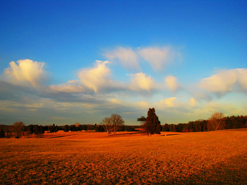 Manassas National Battlefield Park | Manassas, Virginia |  © Christy Hydeck
