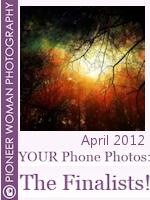 Pioneer Woman Photo Contest