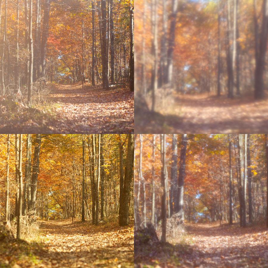 Shooting Through Different Materials // Manassas, Virginia //© Christy Hydeck // AlwaysChrysti.com