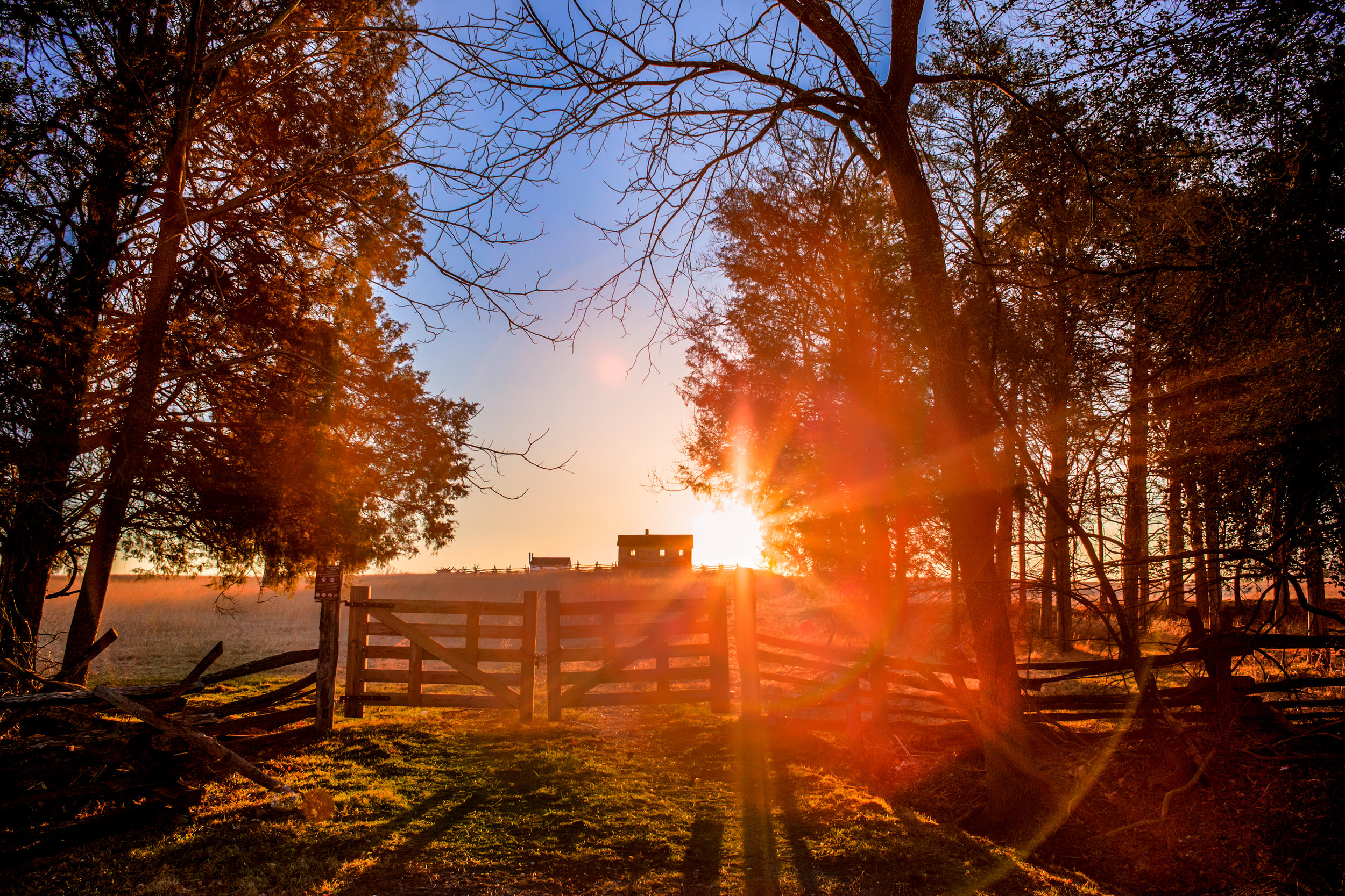 Sunrise at Manassas Battlefield Park | Manassas, Virginia | 2015 | Client: Flonase | © Christy Hydeck