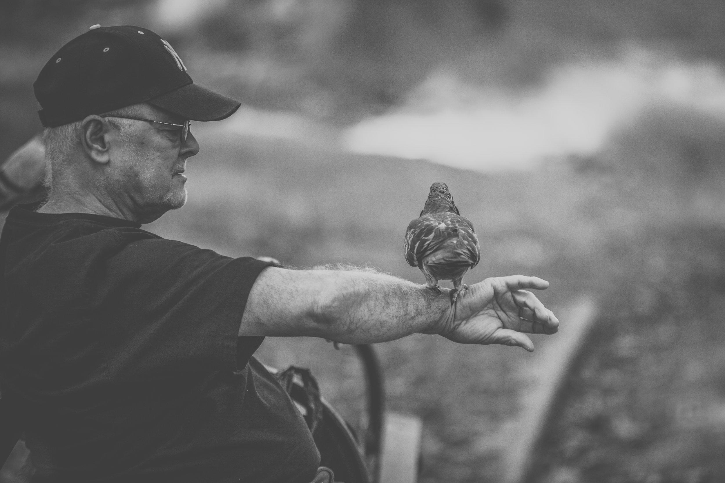 Feed The Birds | Central Park, New York City, New York | 2012 | © Christy 'Chrysti' Hydeck