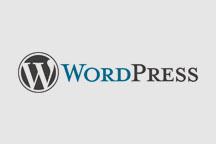 Word Press Logo.jpg