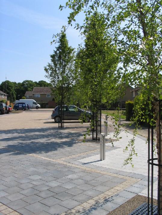 Acle Gardens Nottingham.jpg