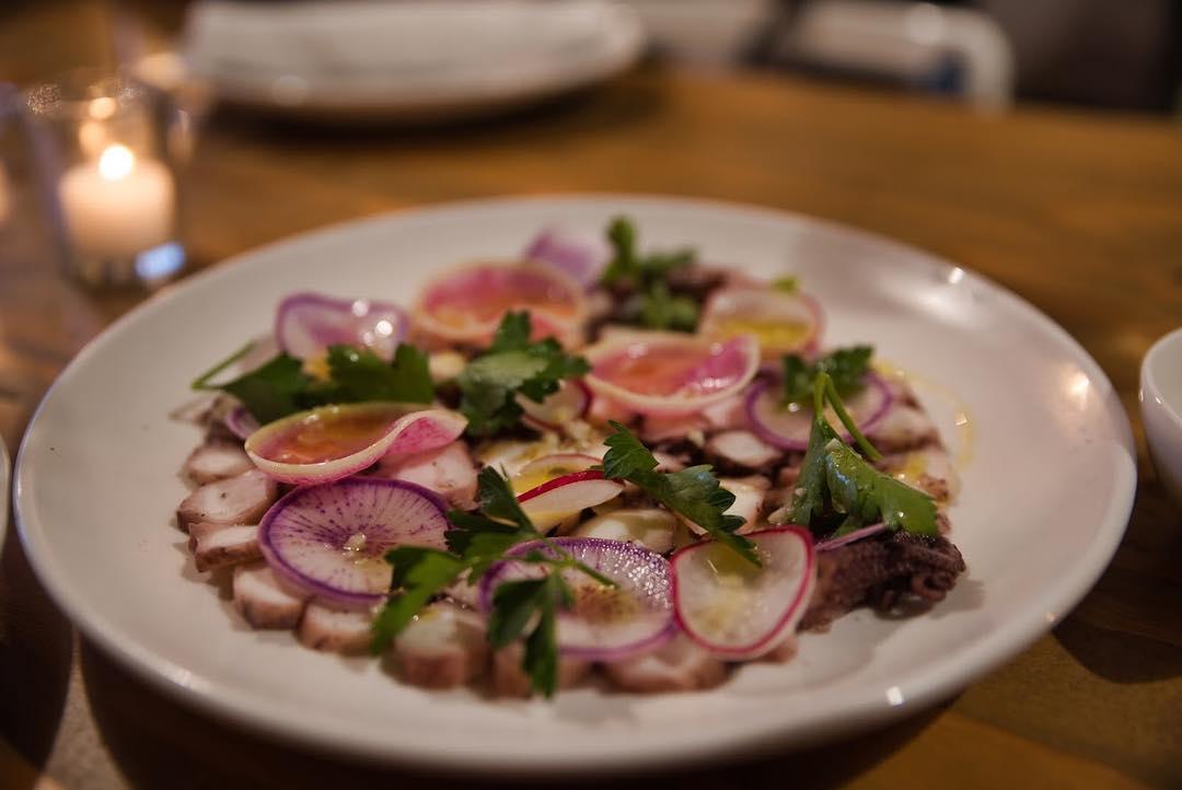 Marinated Octopus- Shaved Radish, Lemon, Parsley, Garlic