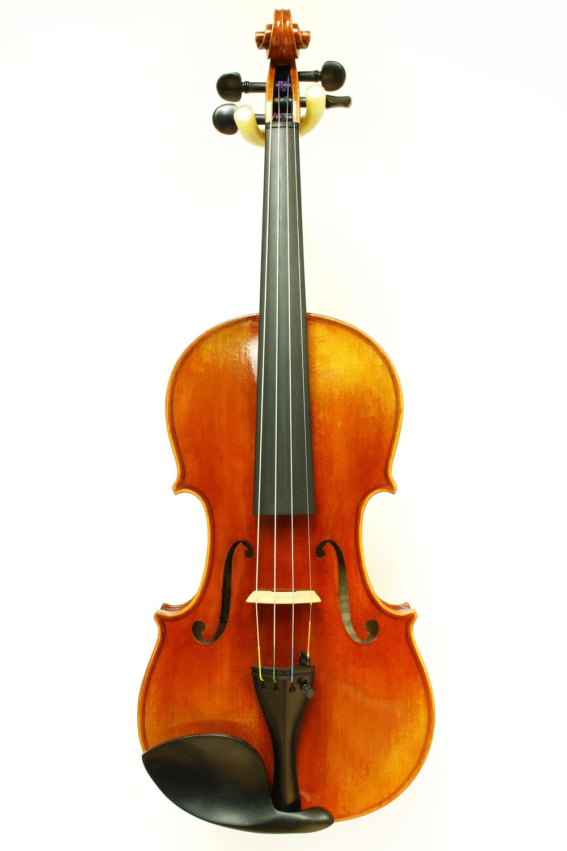 Sonatina Strings SV250E - $1999