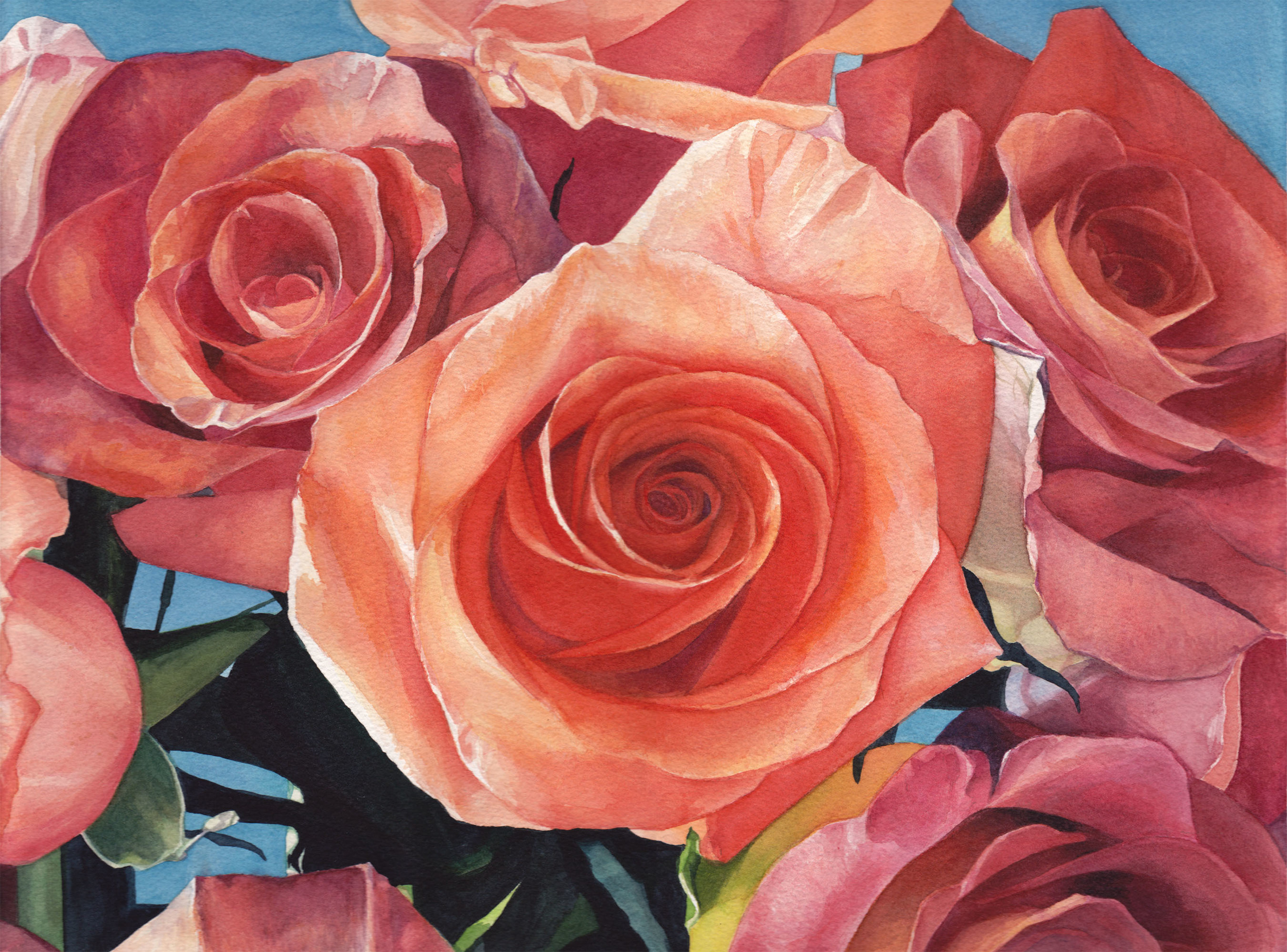 """Open Roses   12"""" x 16"""" watercolor on paper"""