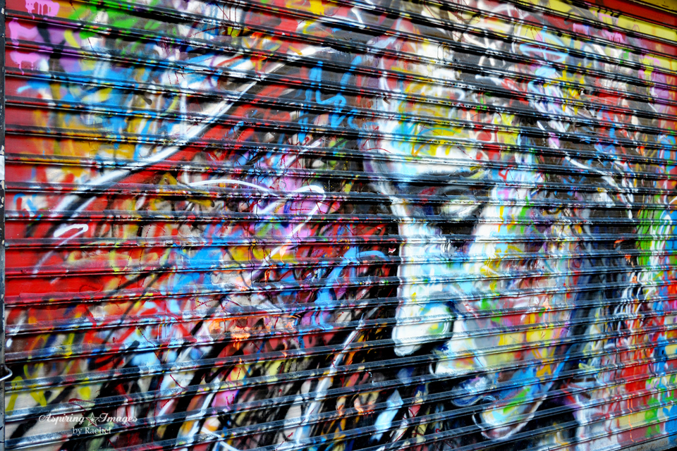 2010_Dec_NYC_Graffitti_Door-web