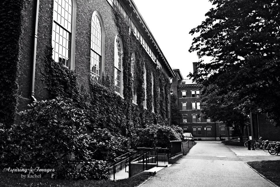 HarvardUniversity-Boston-MA-3