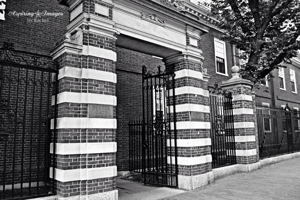 HarvardUniversity-Boston-MA-5
