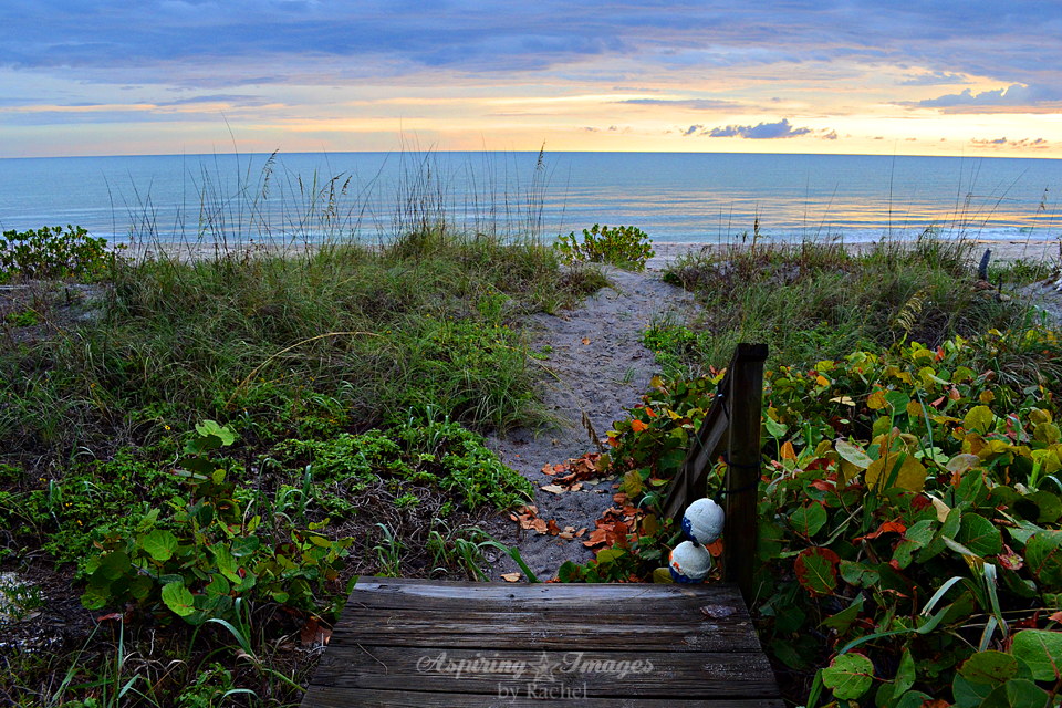 Beach Crossover Boardwalk at Sunset by Sand Crossover Sea Grass by Aspiring Images by Rachel