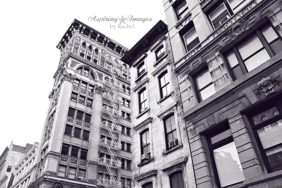 NYC-Historical-Buildings-Details-BnW