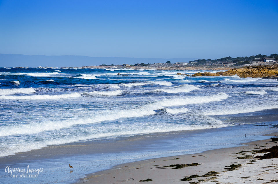 Pebble Beach, California