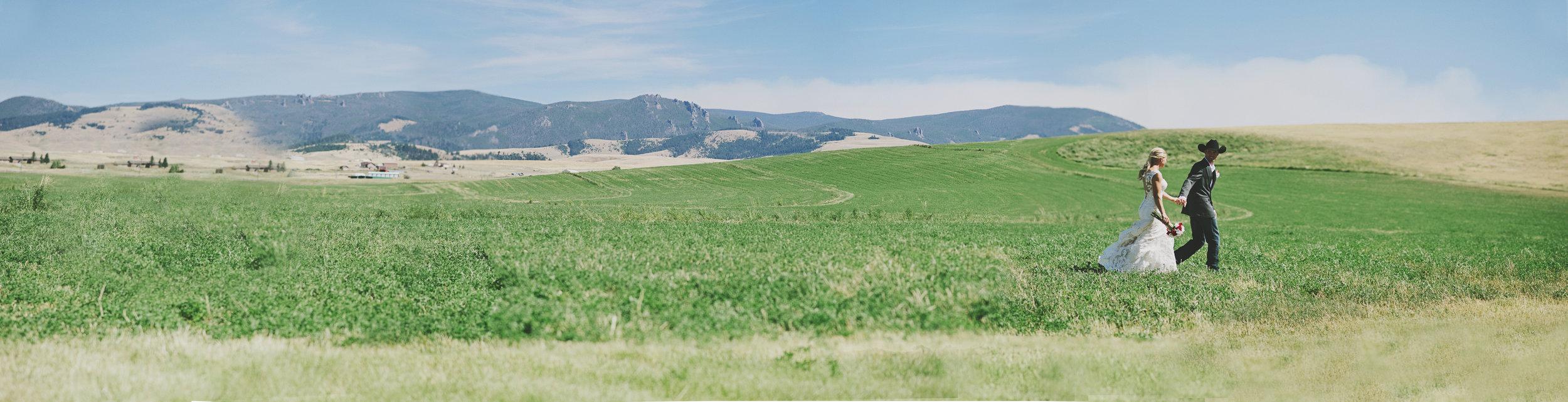 Panorama in Field.jpg