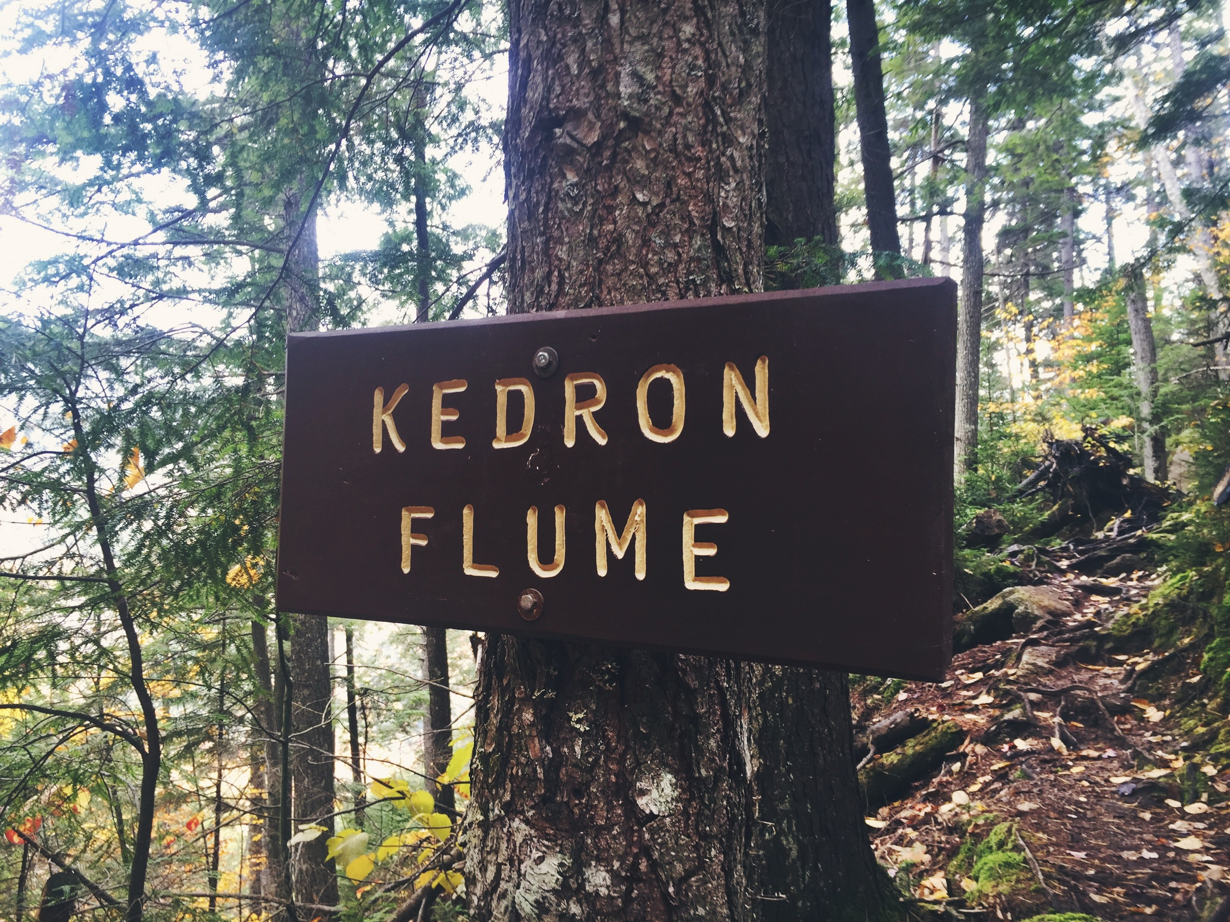 Kedron Flume, a waterfall and small open gorge.