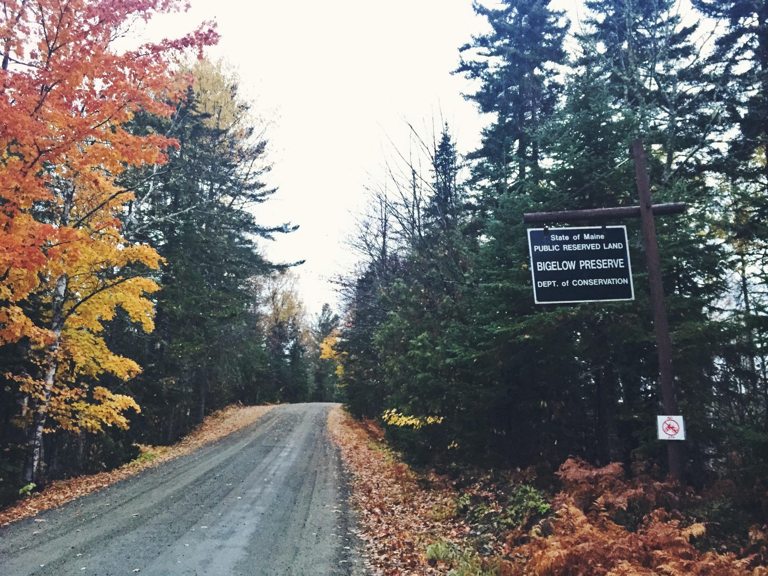 Bigelow Preserve, one of Maine's wildest gems.