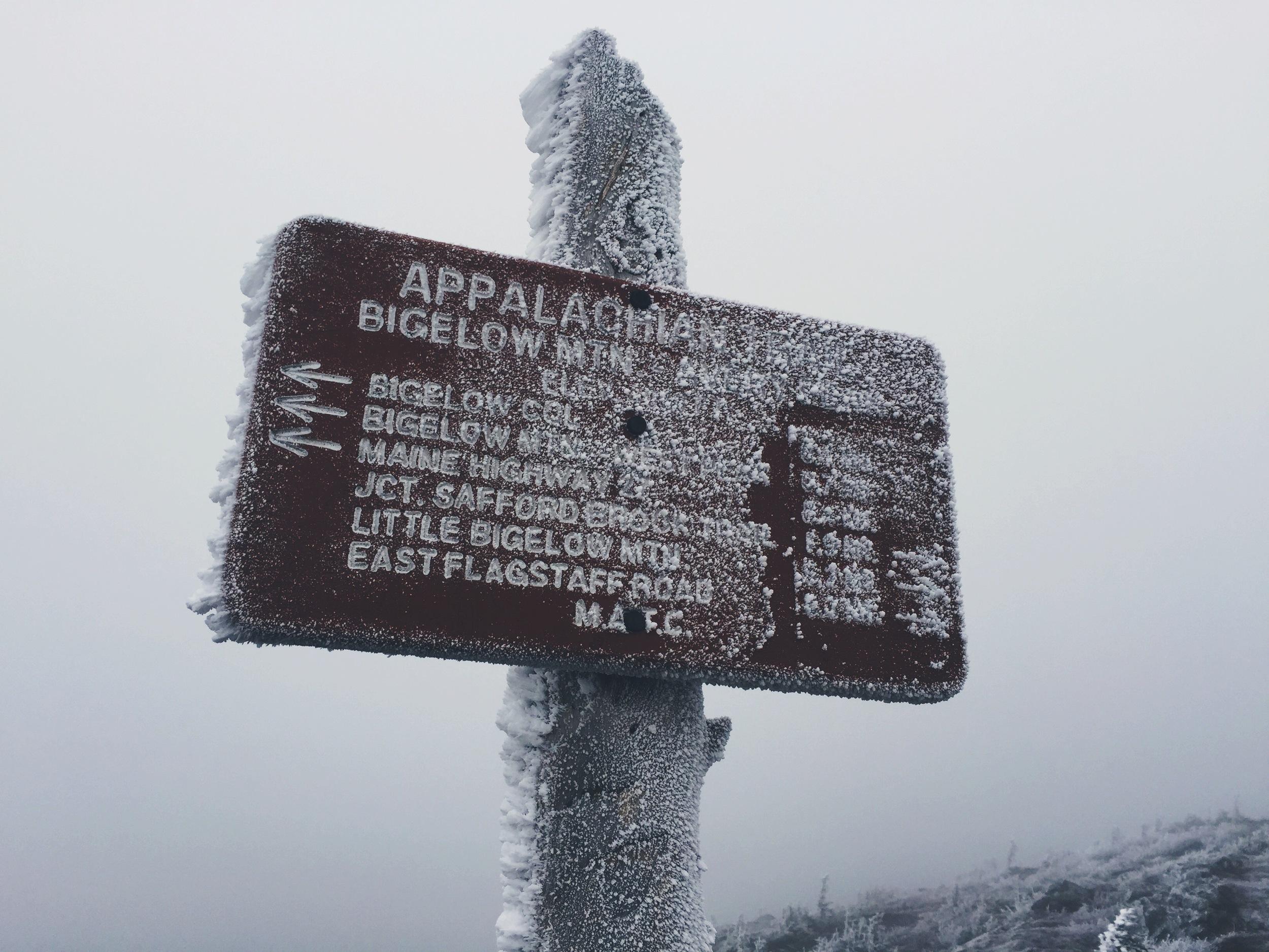 The ice-blasted summit of Avery Peak (#8 on map elevation profile).