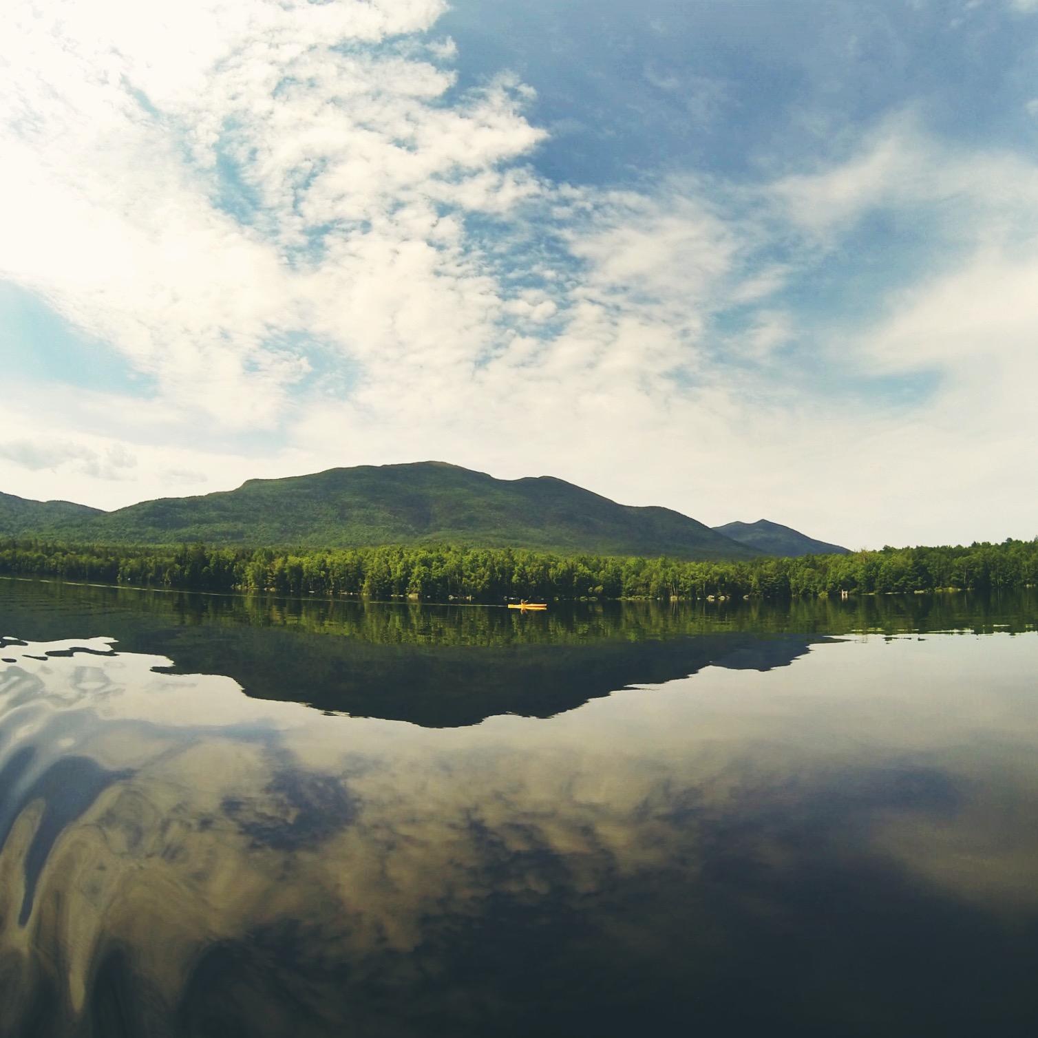 Moose paddles along the Bigelow Range.