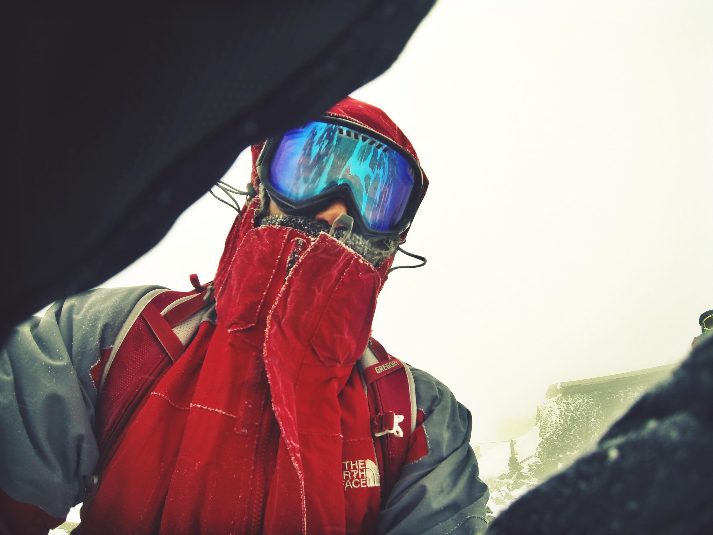 Alpine at the summit.