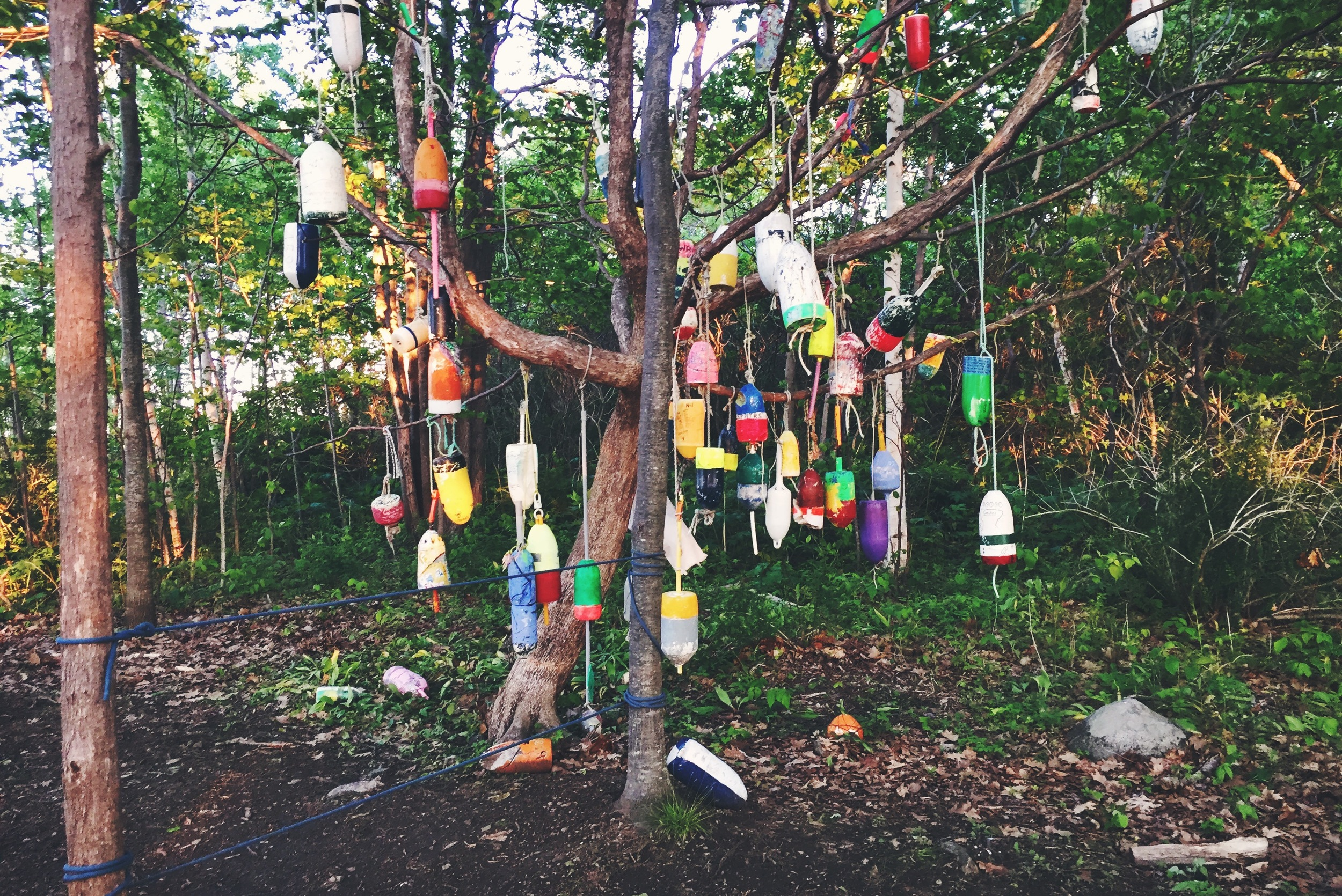 Decorative buoy trees, a common method of recycling lost lobster buoys in Casco Bay.