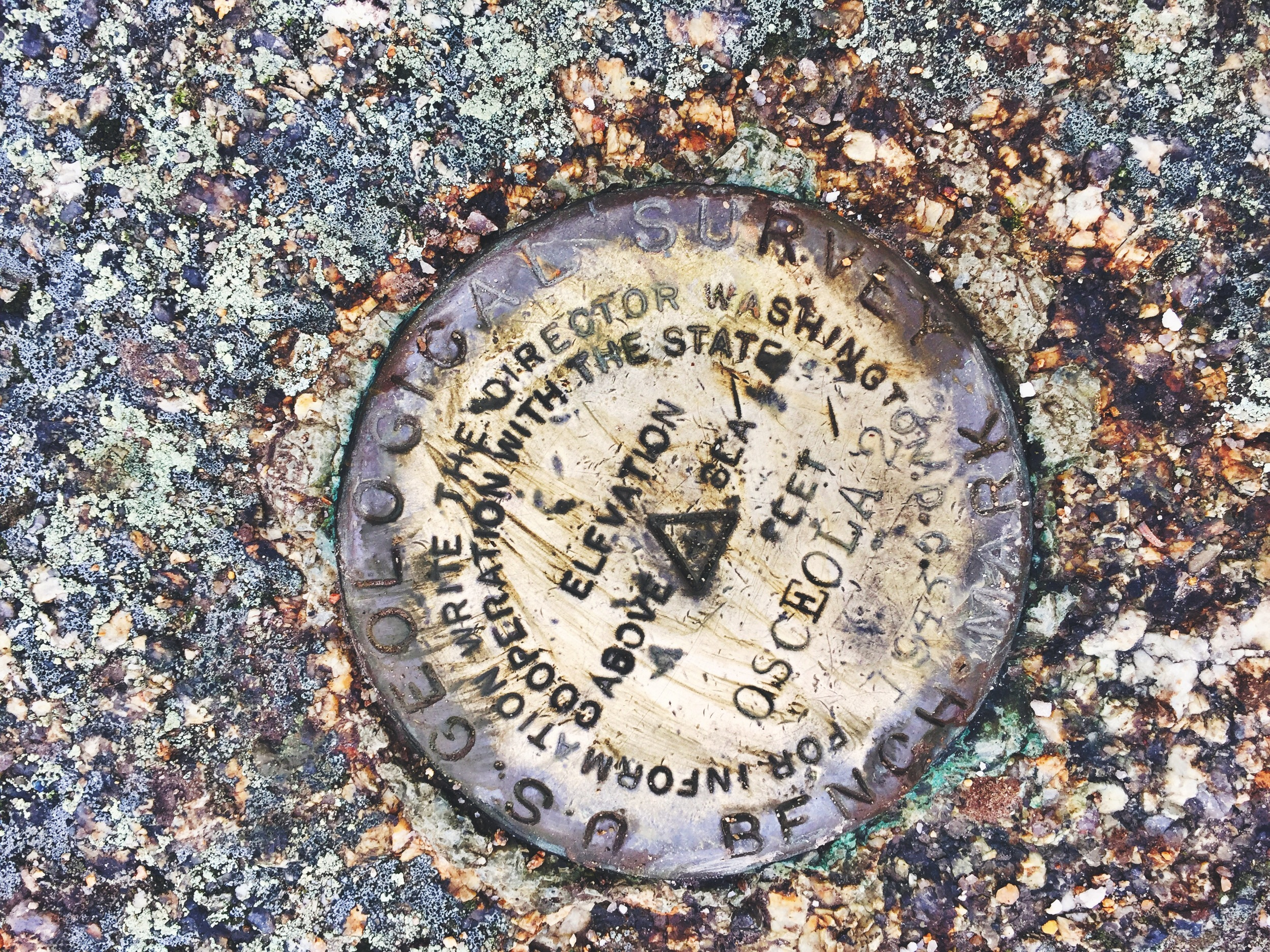 The summit marker of Mt. Osceola.