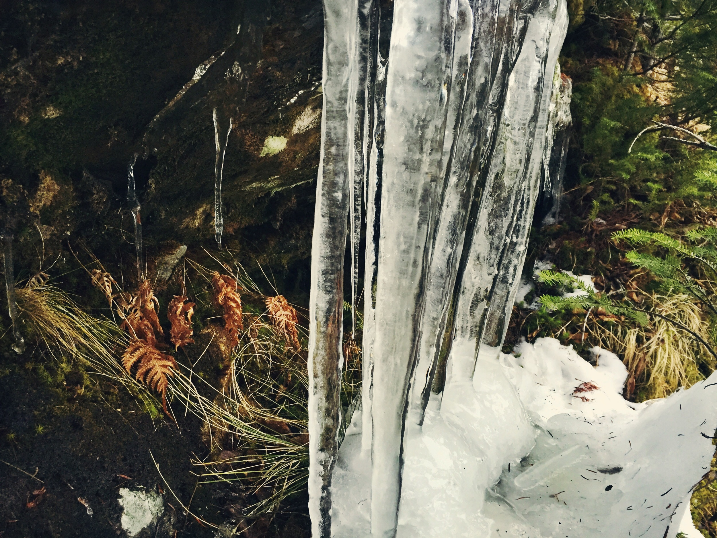 The mountain had yet to succumb to winter's icy grip.