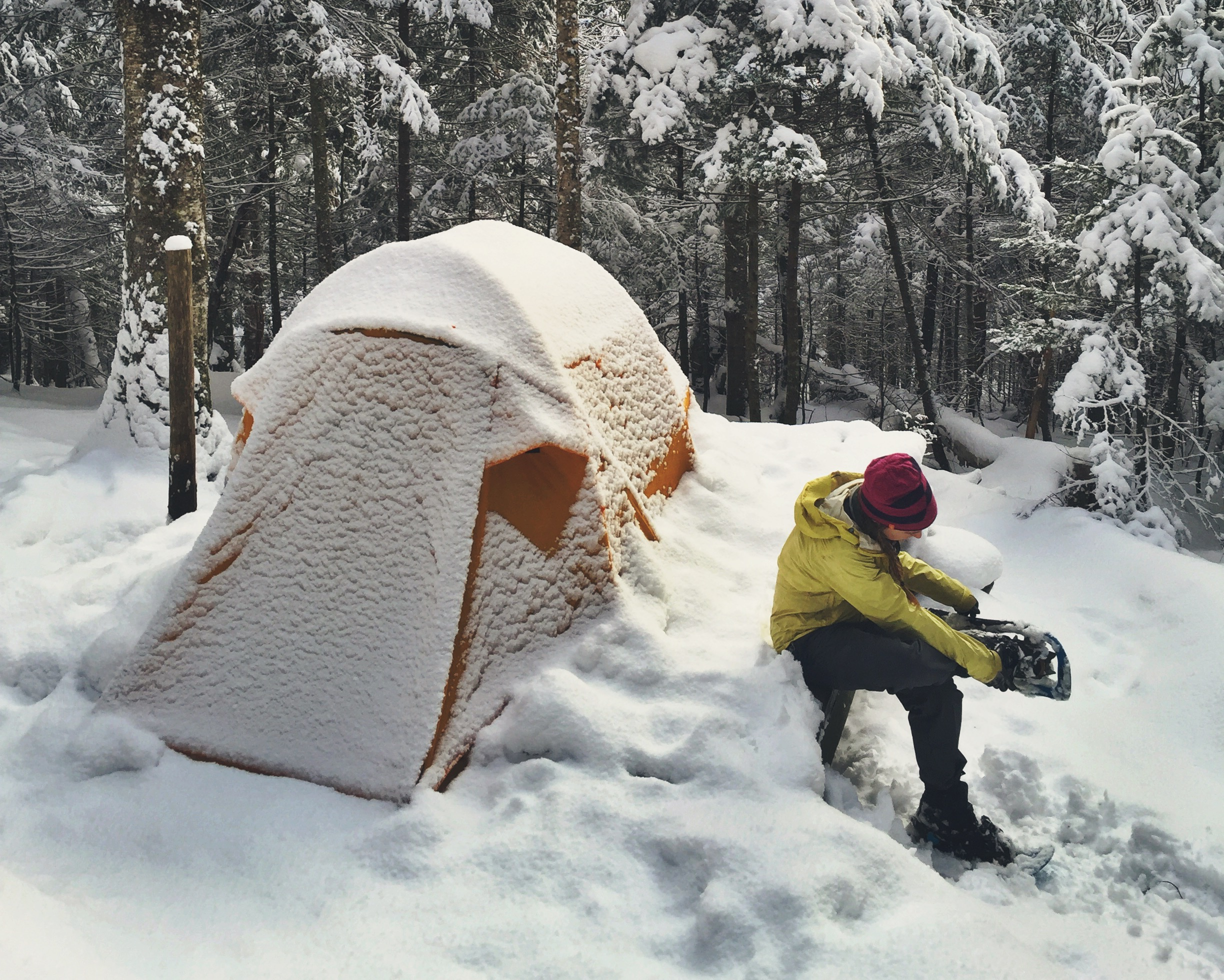 Moose removes her snowshoes before tearing down camp.