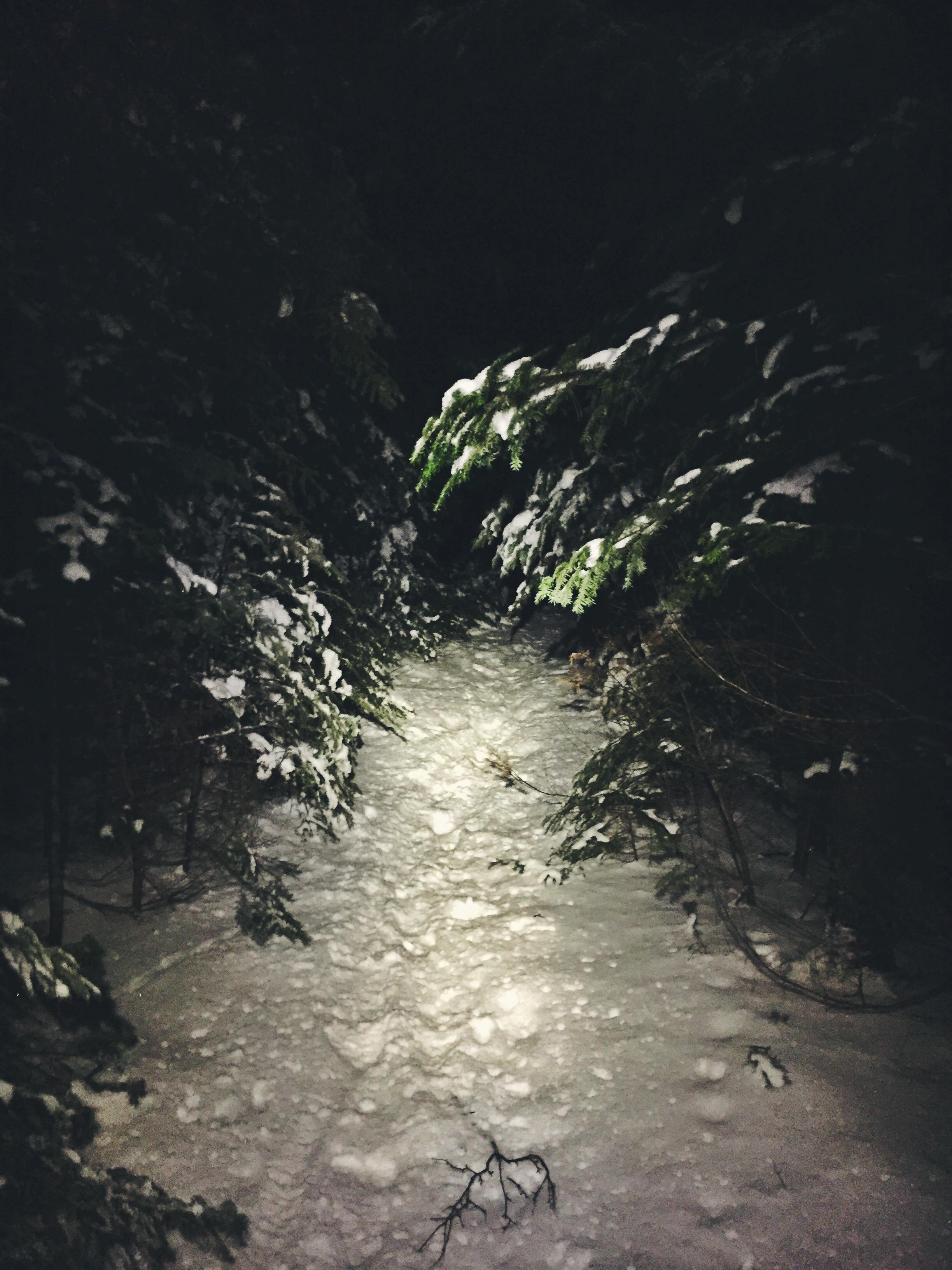 Trekking through the dark Pemigewasset Wilderness