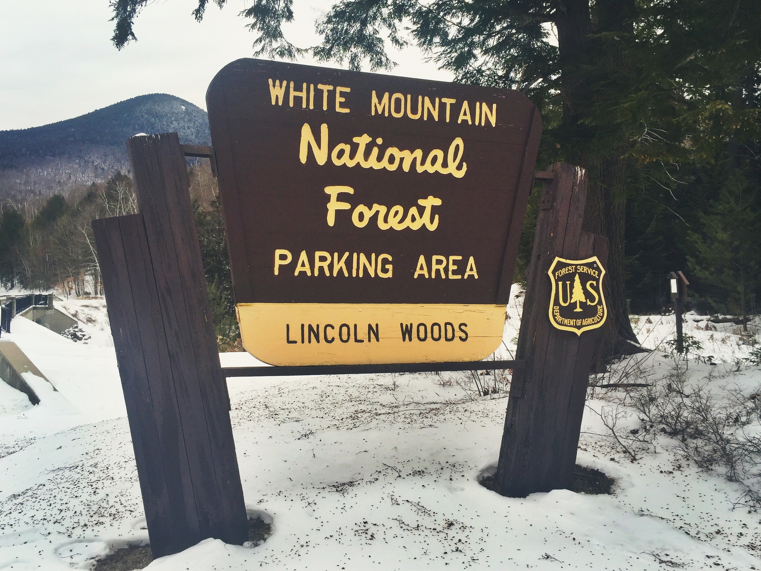 Lincoln Woods -the departure point for Pemigewasset Wilderness adventure