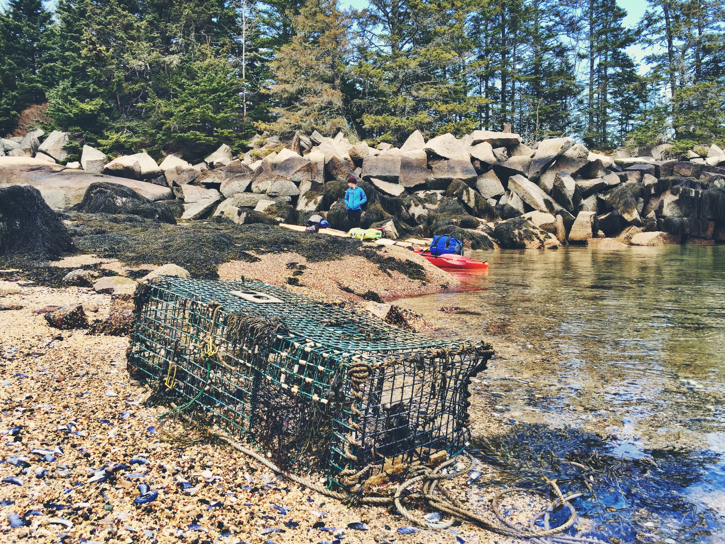 Abandoned lobster traps at our second landing of Green Island
