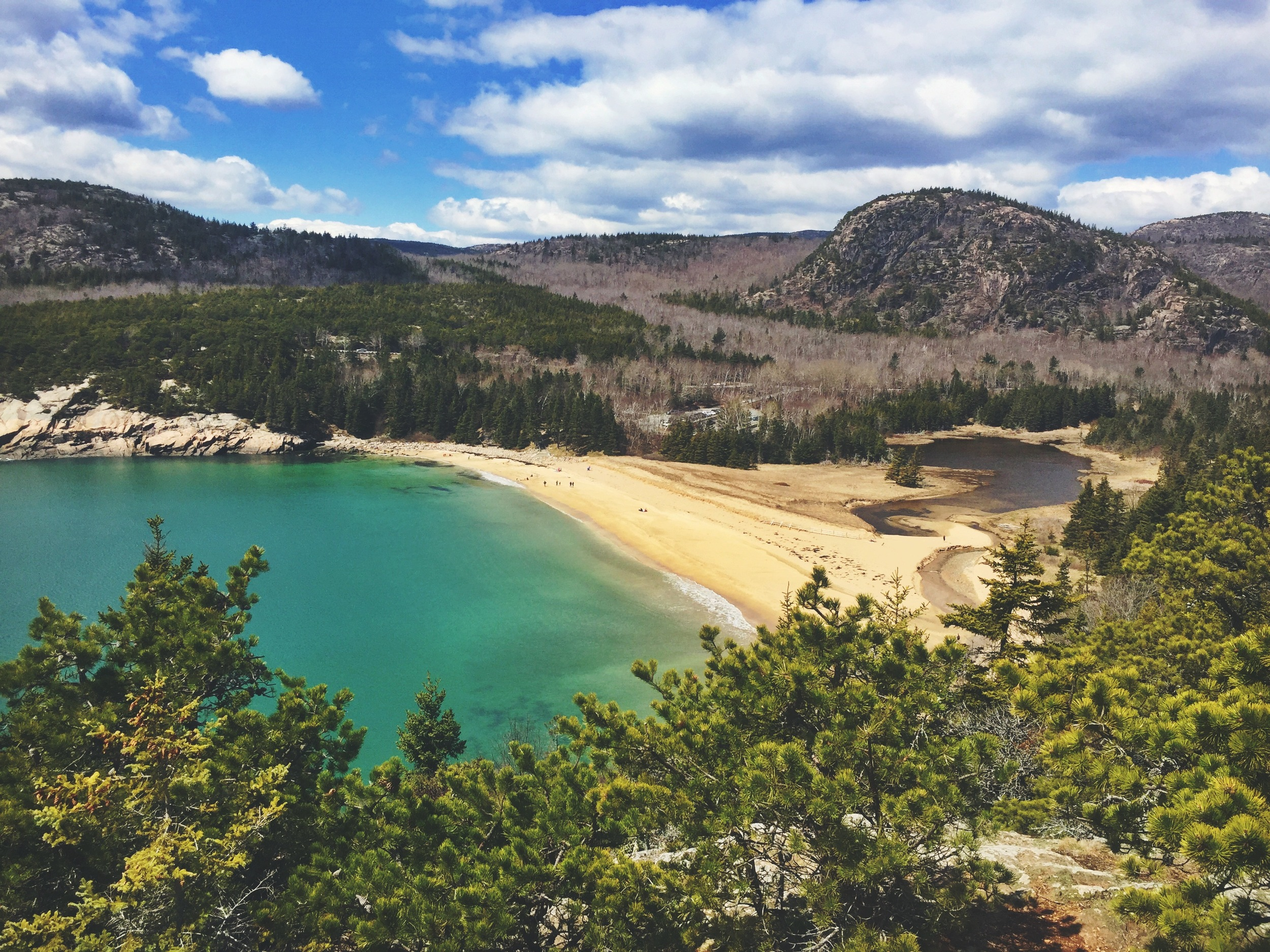 Catch this view of Sand Beach from the Great Head Trail.