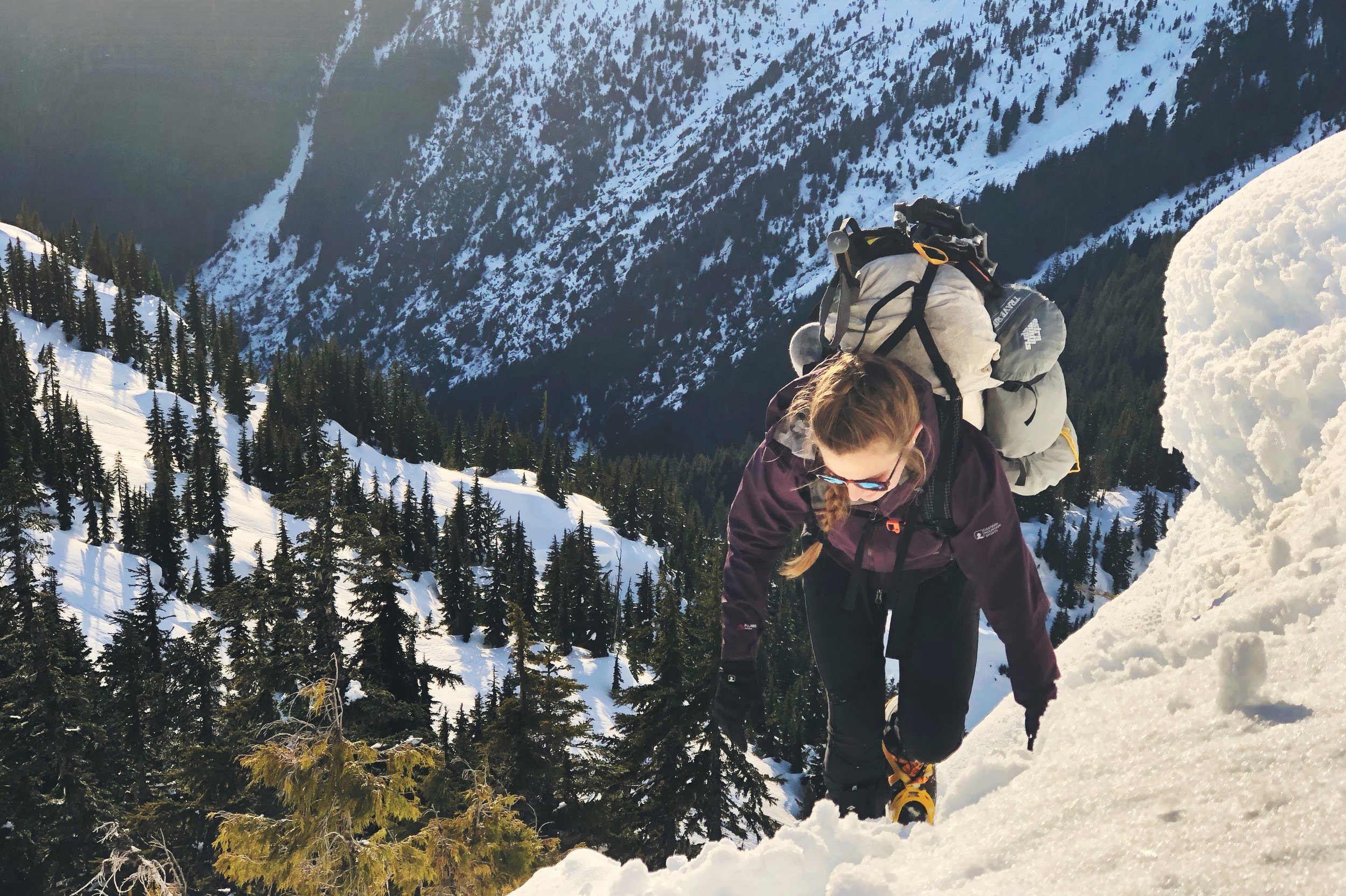 Moose climbs up Trappers Peak