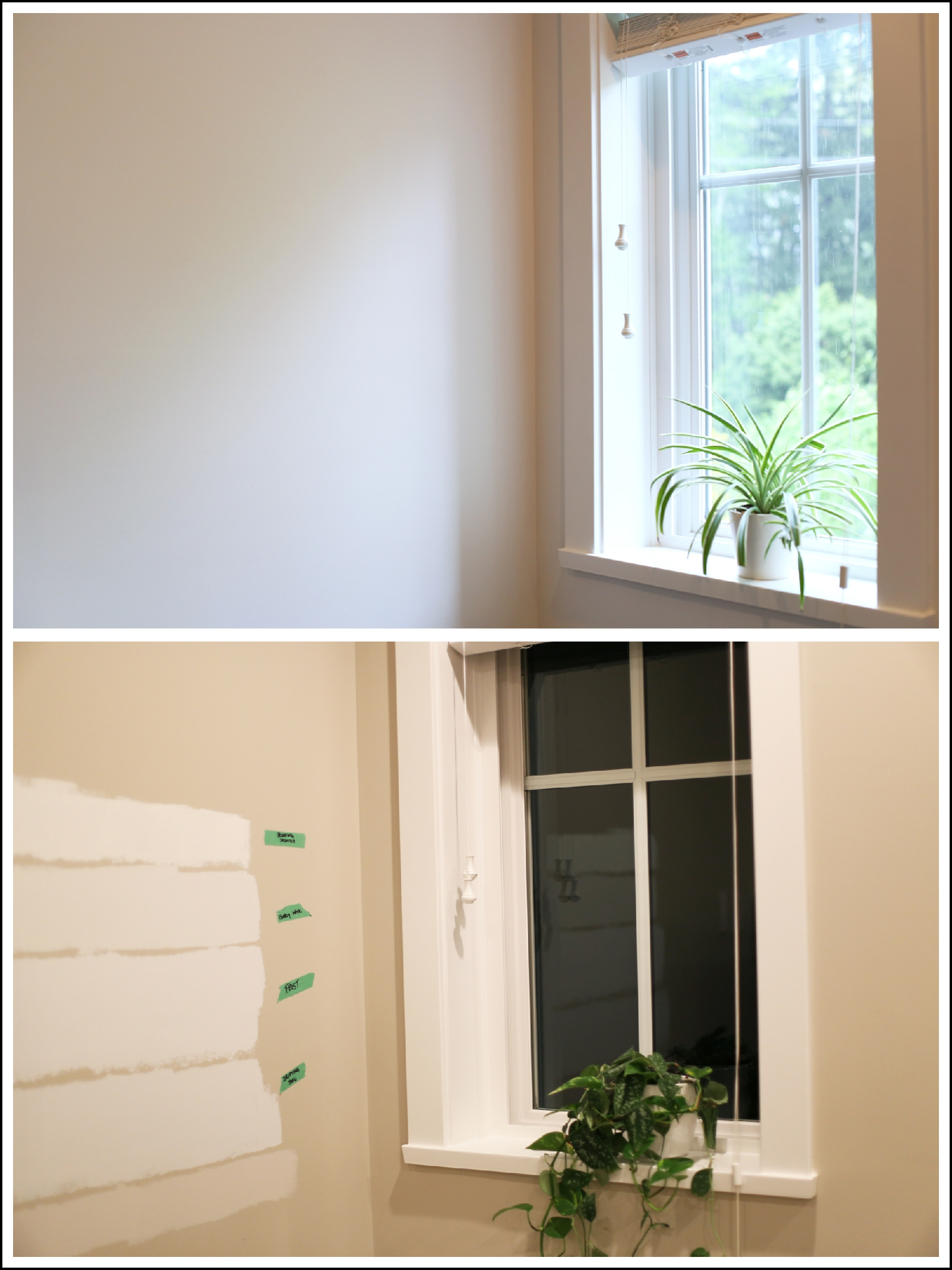 WOW. Love this perfect white paint - it's not too blue and not too yellow.