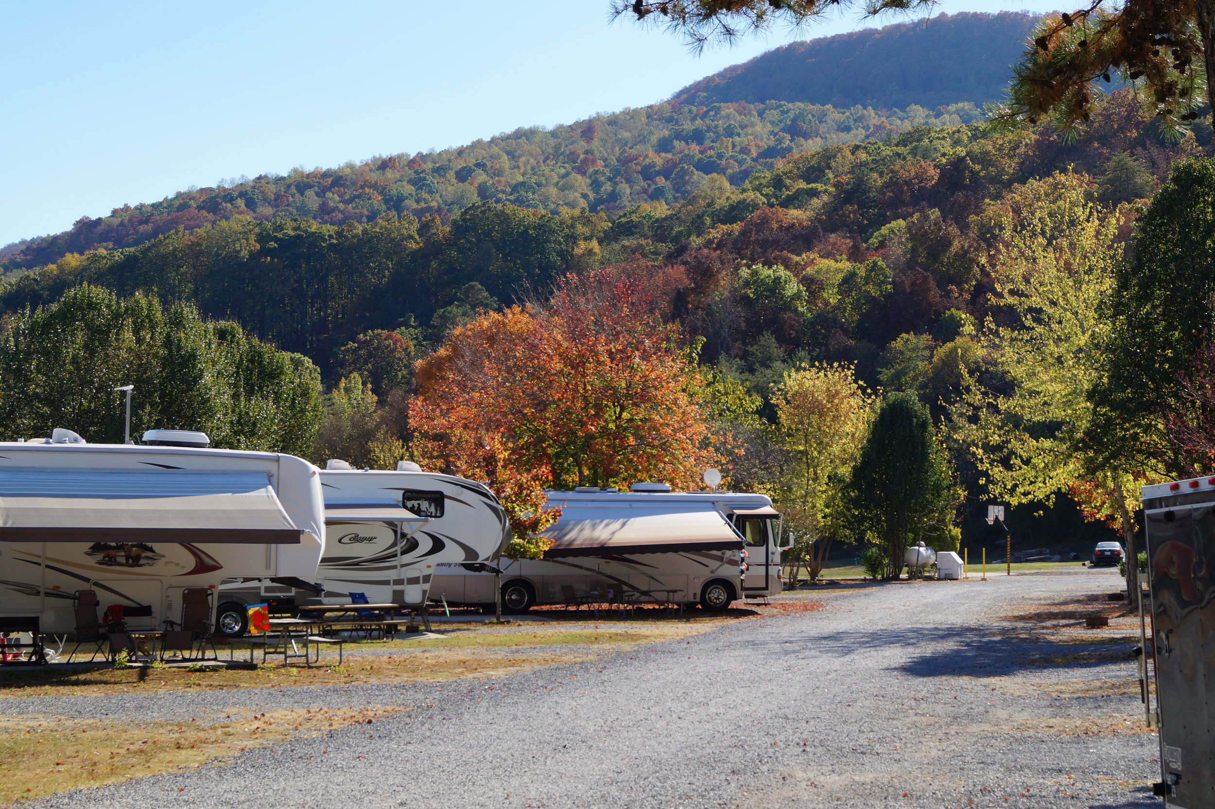 RV & Camp Sites - Full Service, Water & Electric, and Primitive Sites