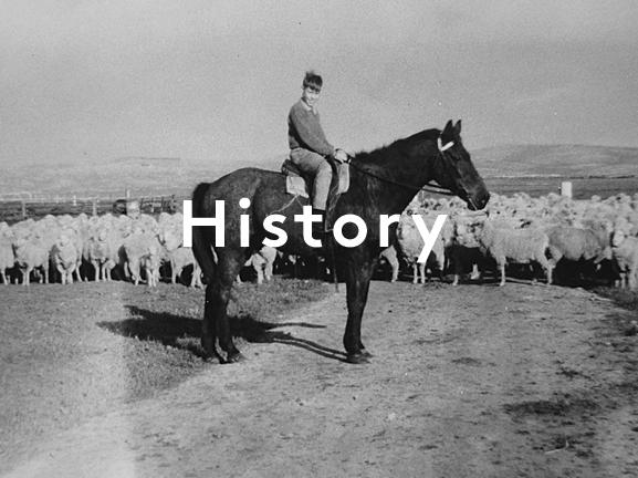 History_horizontal.jpg
