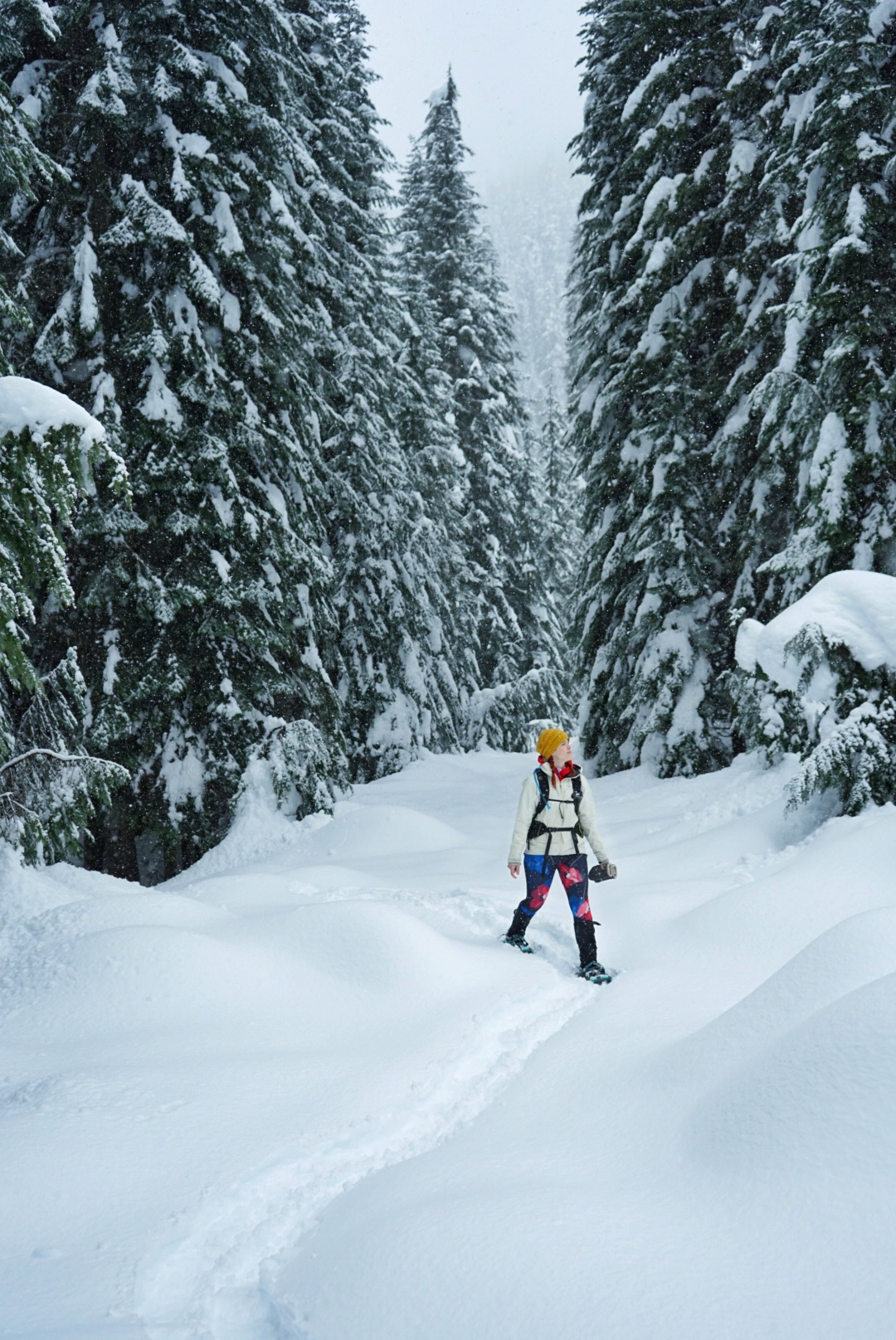 Flat road walks can be a great option when the avalanche forecast is high!