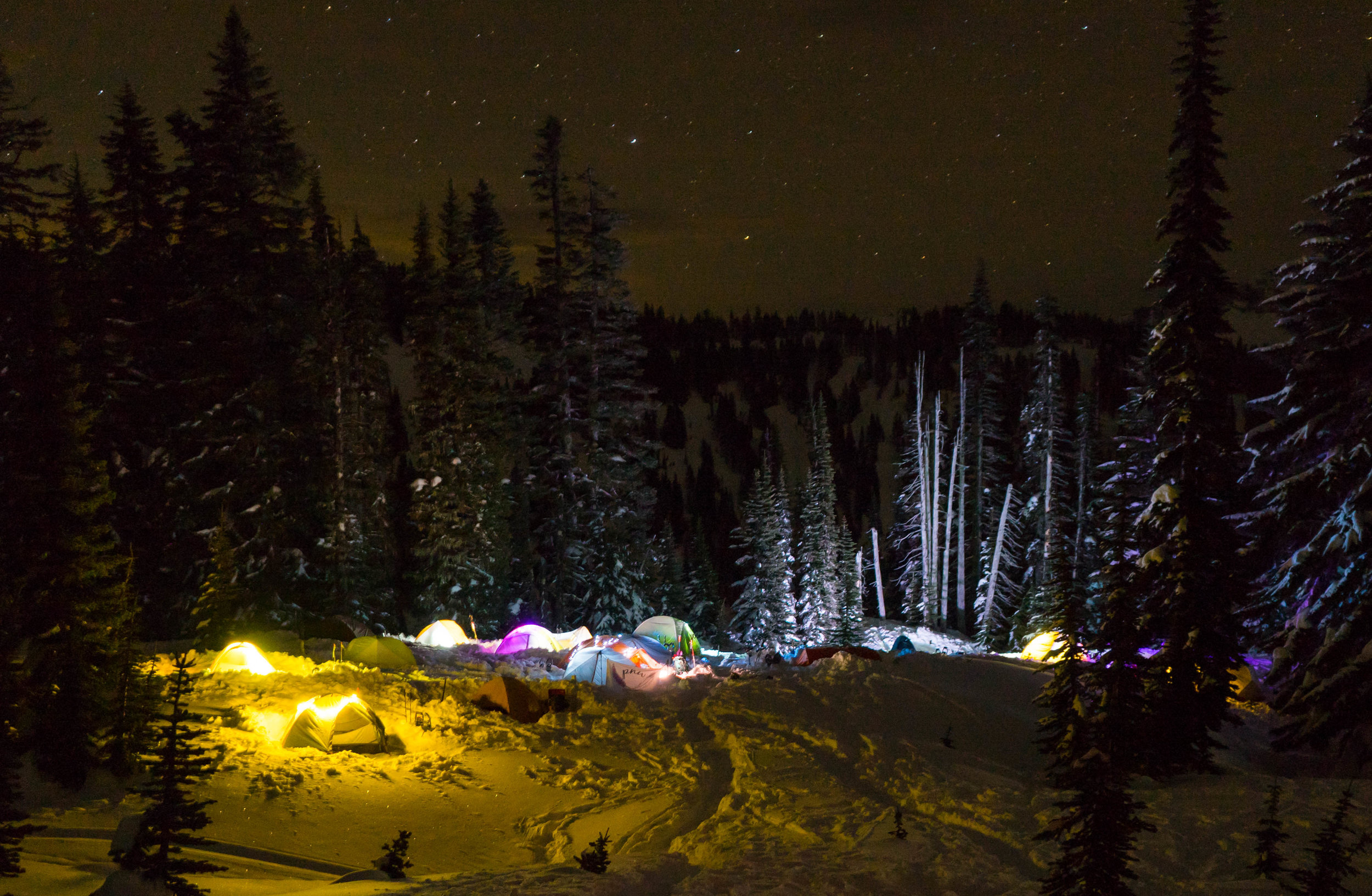 All of our tents under the stars!