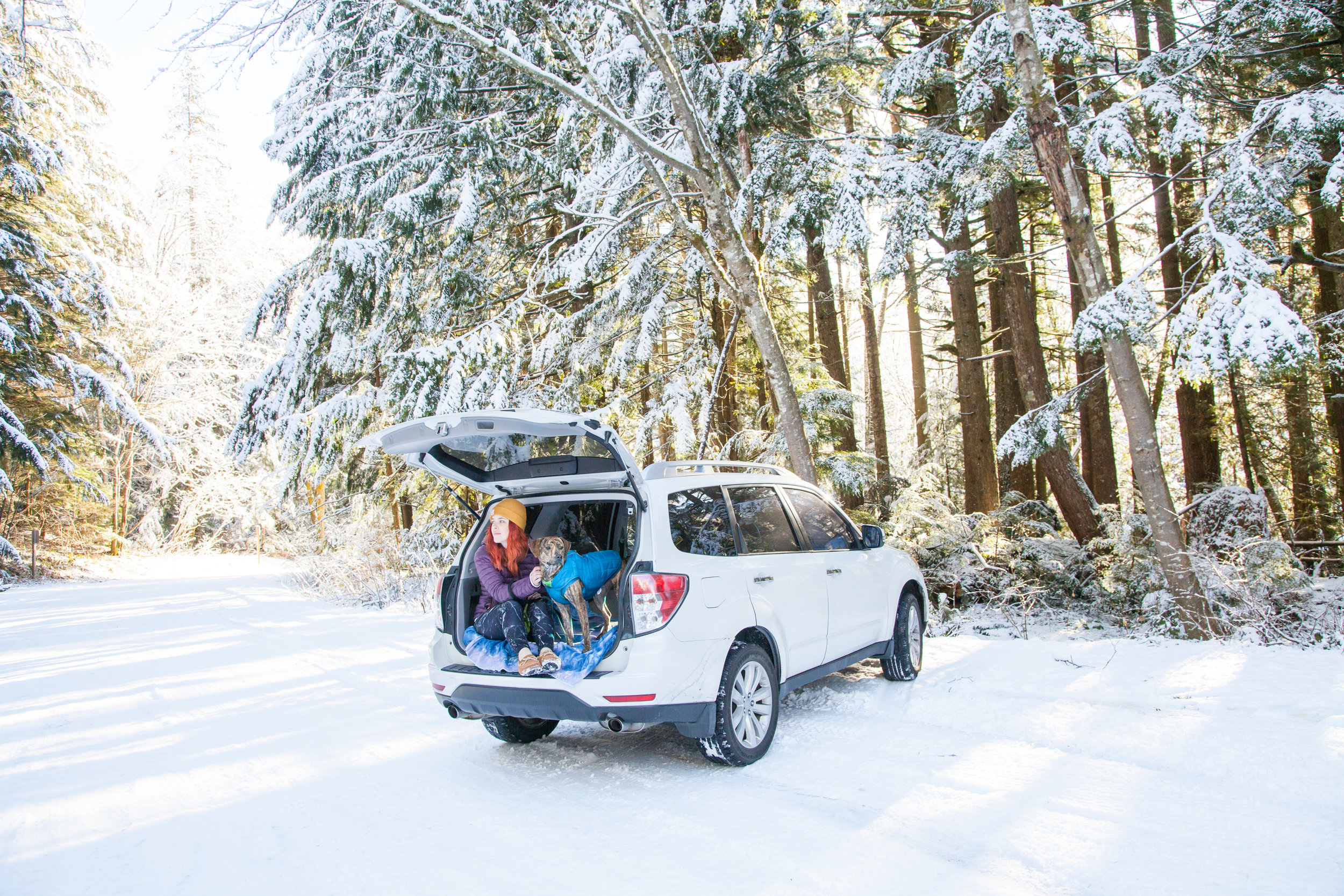 Don't own a car? Never fear! There are still ways for you to explore trails near Seattle!