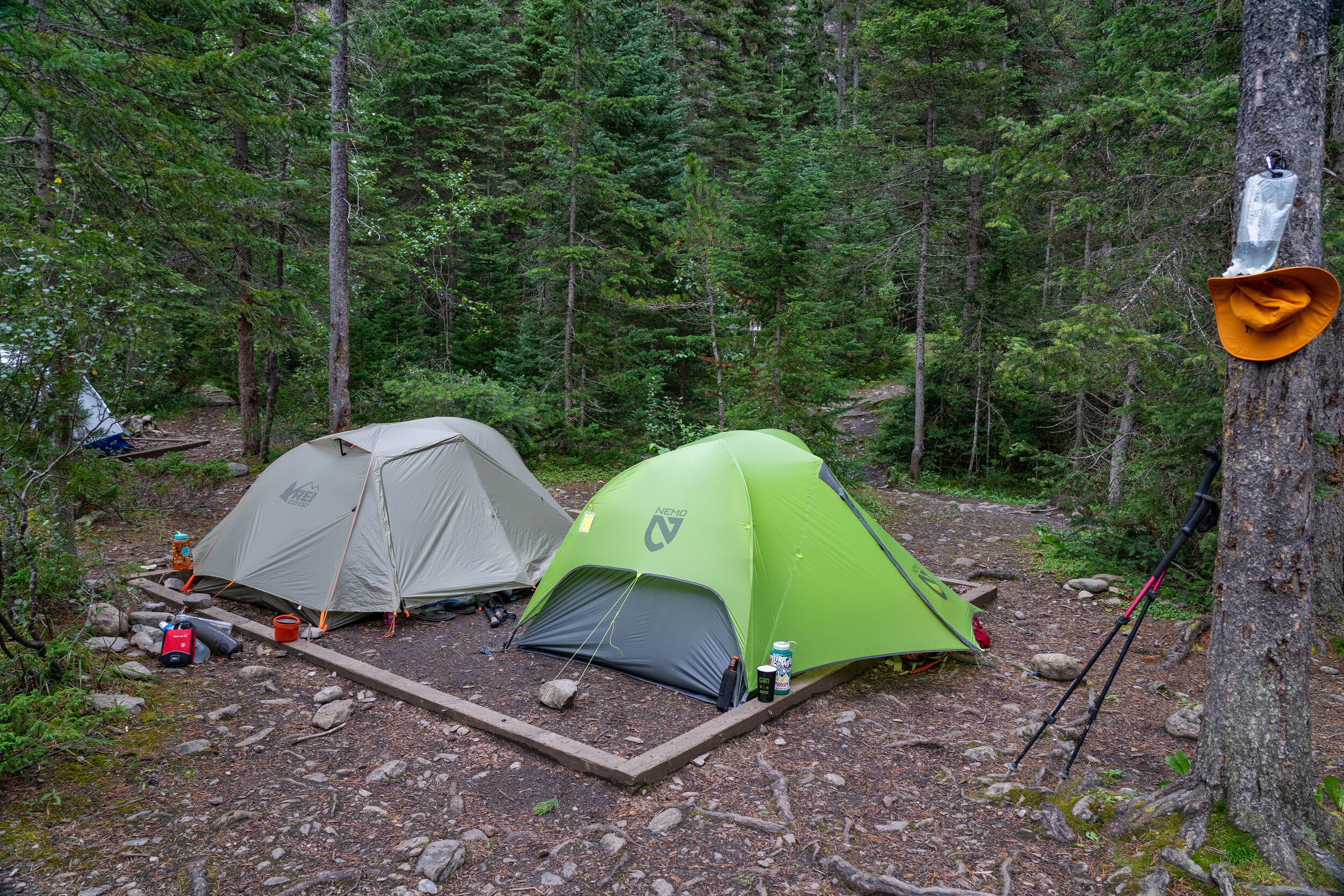 Whitehorn tentpads are unfortunately right next to the trail, and right next to each other.