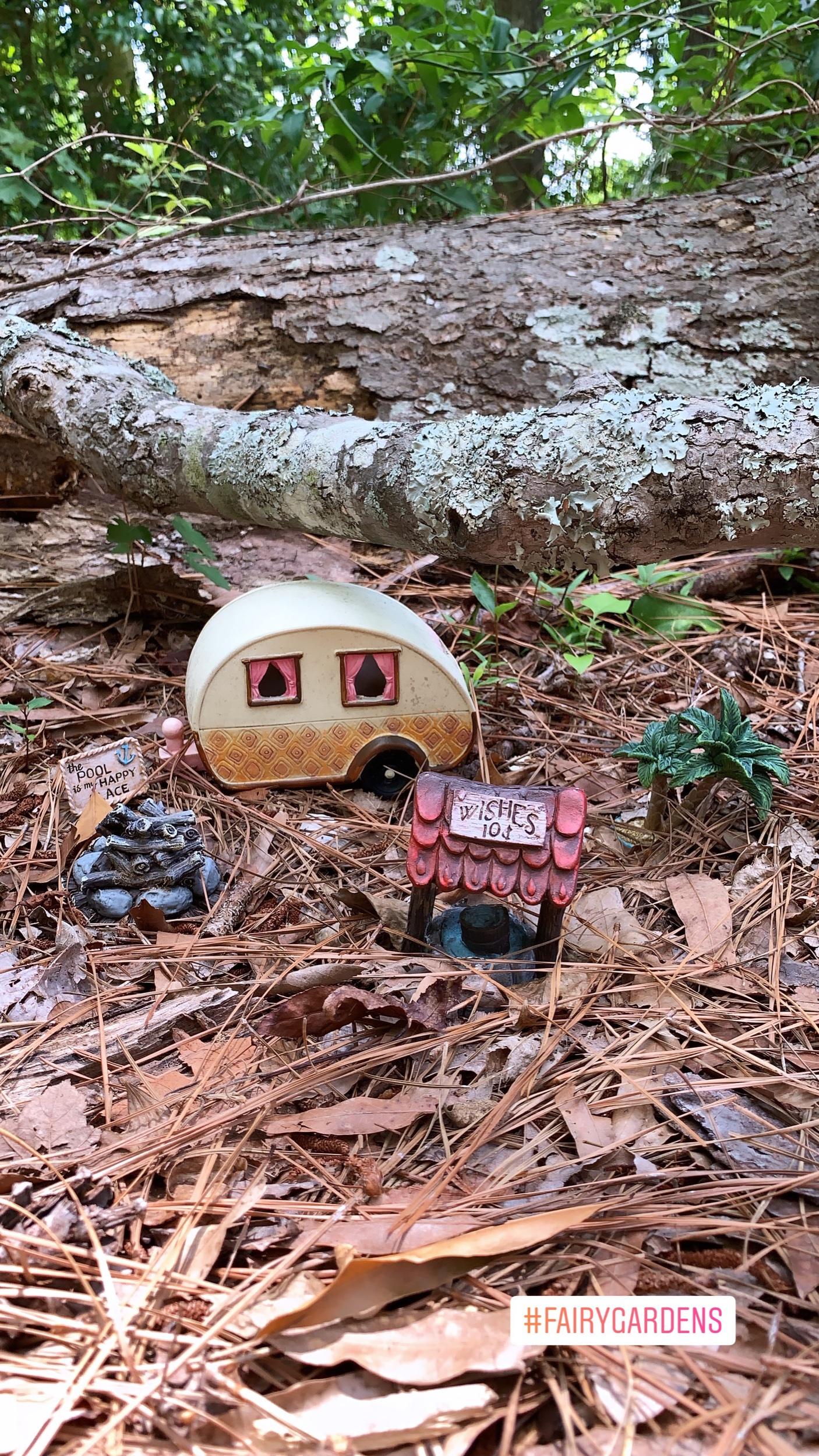 Fairy Gardens in Myrtle Beach- Rising Stories Podcast - Corine Sandifer