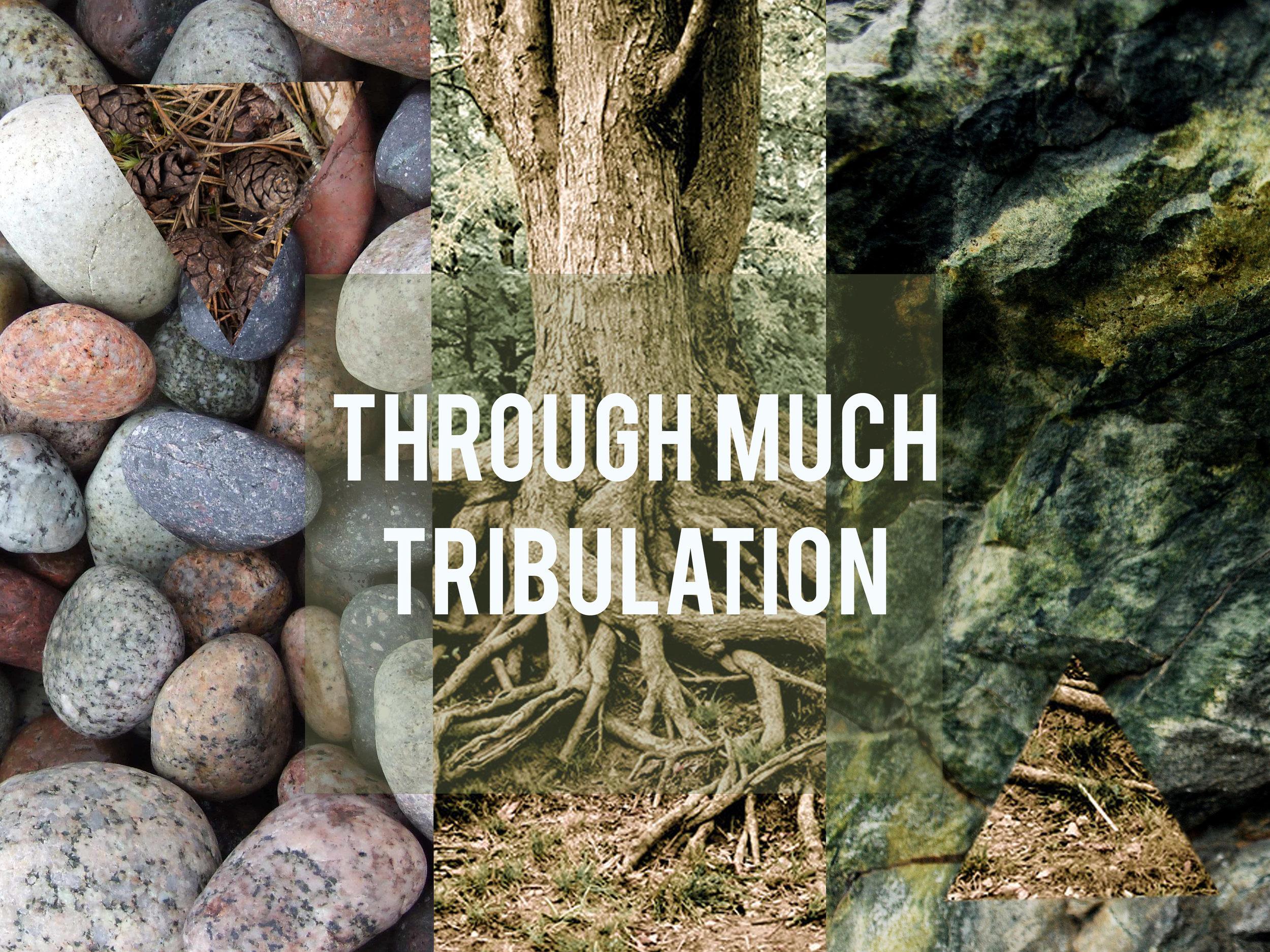 Through much Trib..jpg