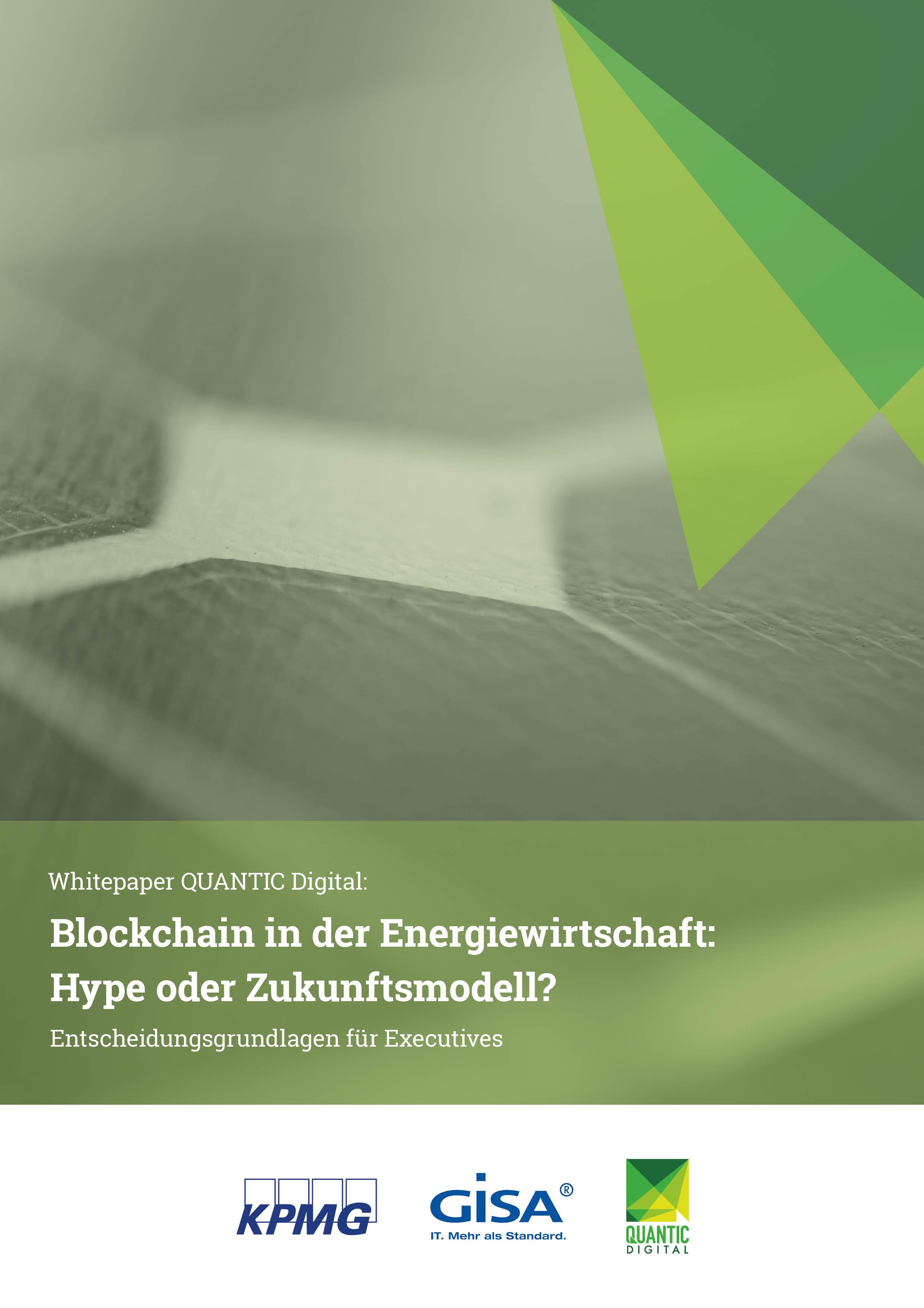 Whitepaper - Blockchain in der Energiewirtschaft: Hype oder Zukunftsmodell?